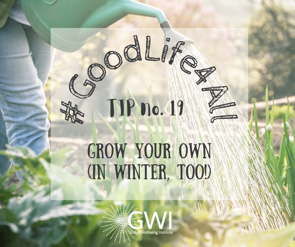 wellbeing tip #19 grow your own organic veggies
