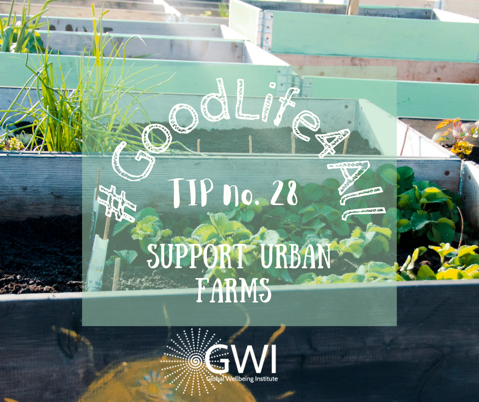 wellbeing tip #28: support urban farms to end hunger