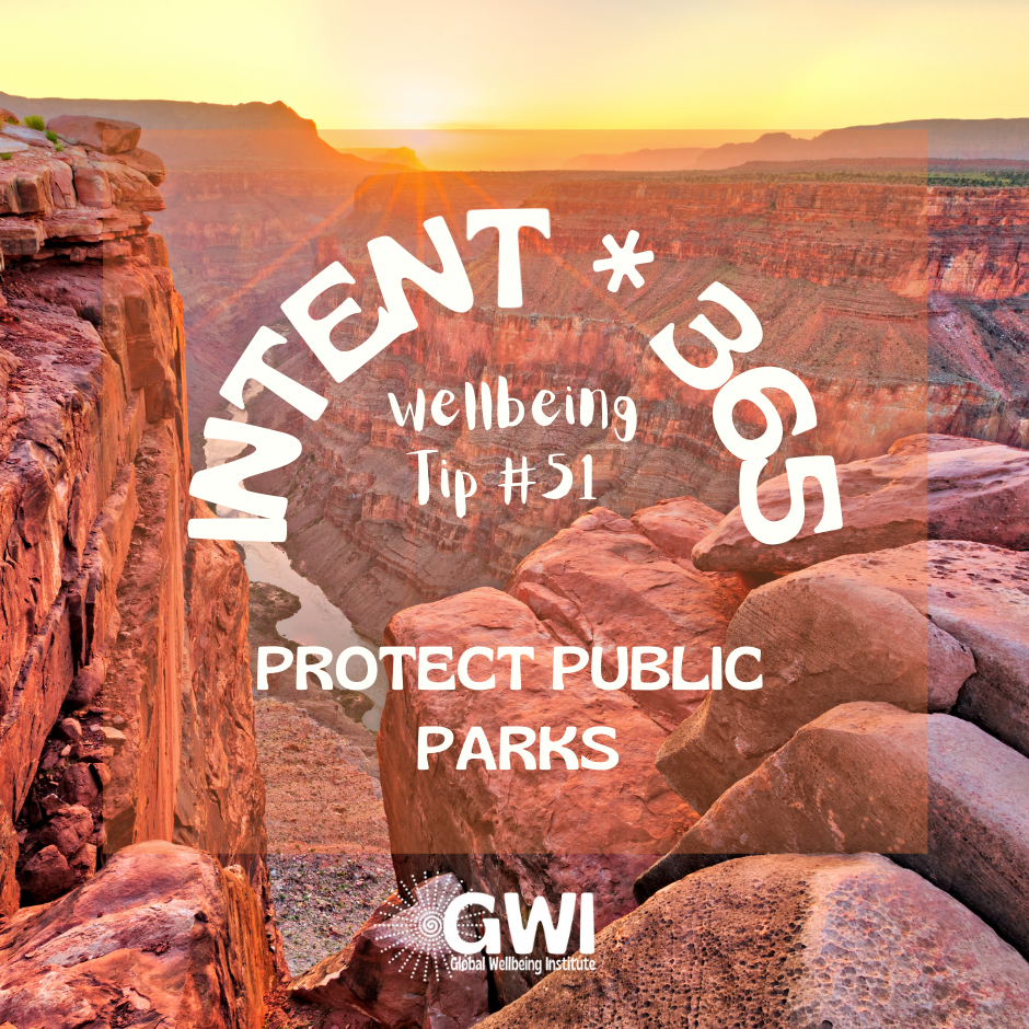 wellbeing tip #51: protect public parks