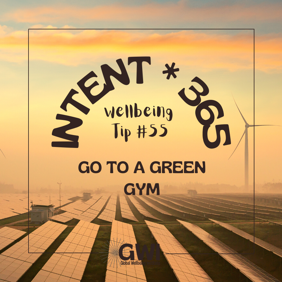 go to a green gym for environmental exercise (sunrise over solar panels and windmills)