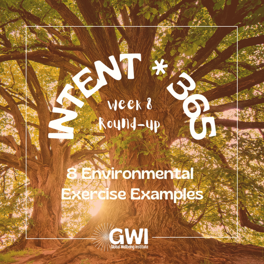 8 environmental exercise examples (tree with sun behind it)